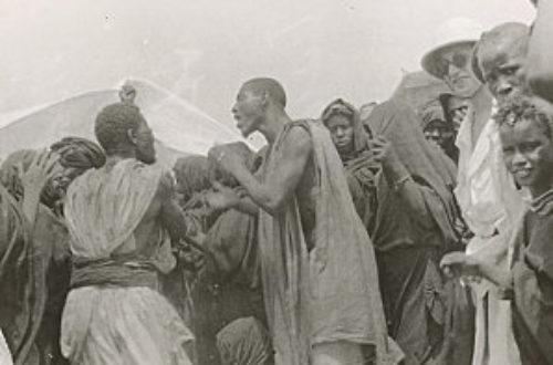 Article : Les Haratines : La « tribu » oubliée