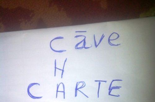 Article : Le parler français hassanya