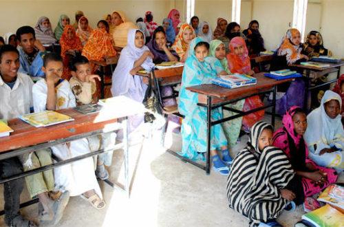 Article : Et les Etats généraux de l'éducation ?