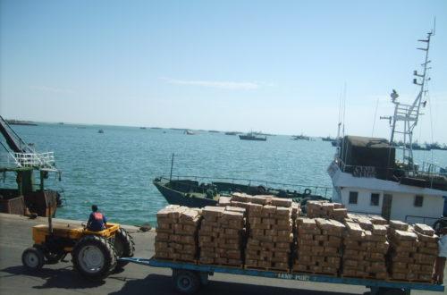 Article : Convention de pêche entre la Mauritanie et la société chinoise Poly-Hondong : Prémices d'un nouveau scandale