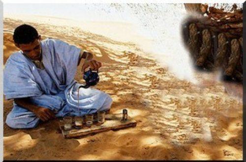 Article : Autour d'un thé : Mauritanie, le pays où les « Docteurs ès n'importe quoi » sont légion