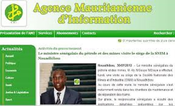 Capture d'écran du site de l'AMI (Photo Google)