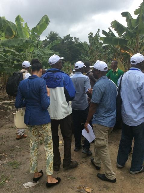 Visite de terrain pour les journalistes (photo : Sneiba)