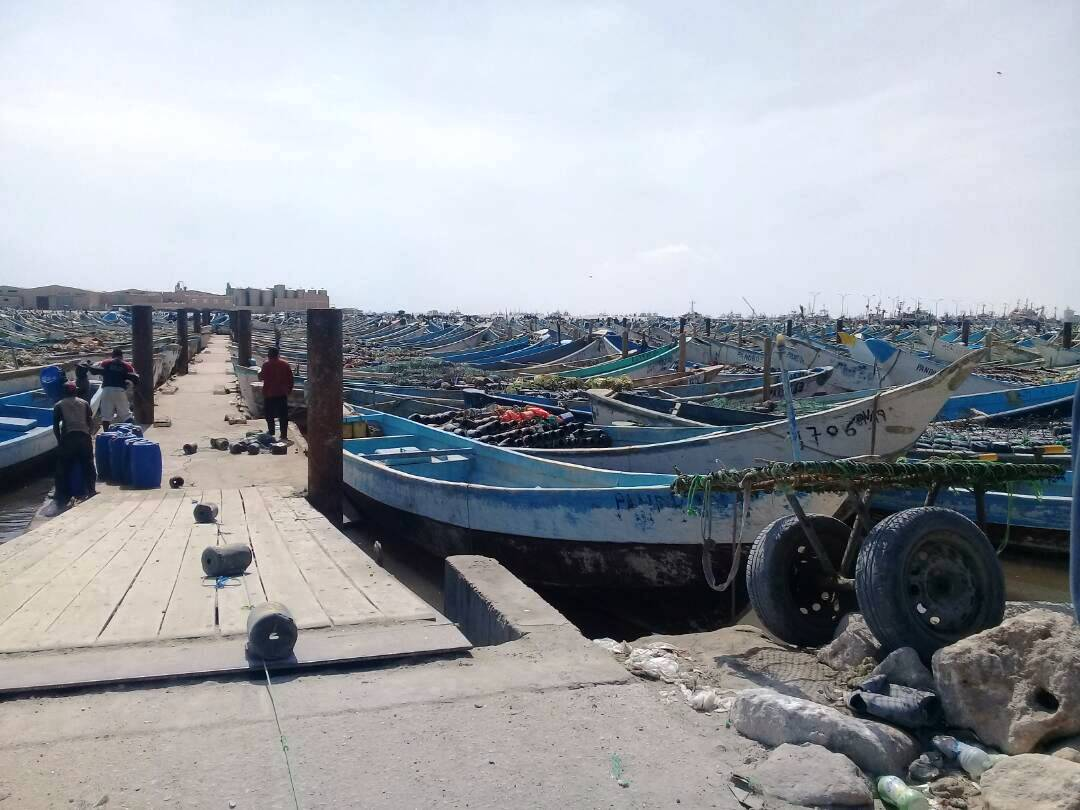 Port artisanale de Nouadhibou (photo : Sneiba)